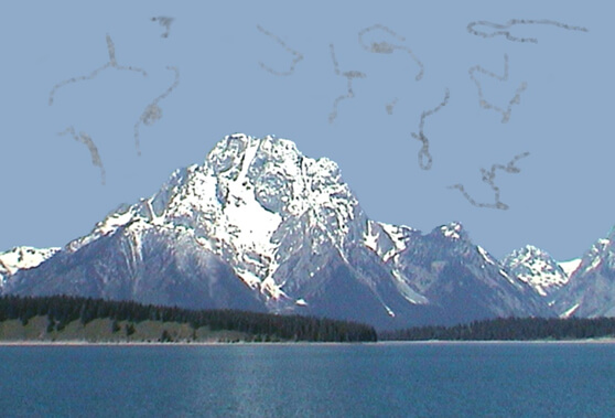 En la imagen observamos unas manchas en el campo visual cuando vemos al cielo, estas son llamadas de Miodesopsias.