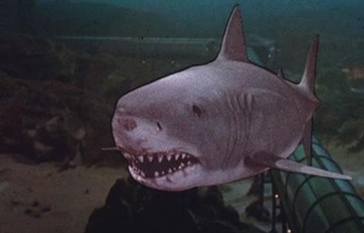 La película Jaws o Tiburón fue la primera en ser presentada en los teatros IMAX