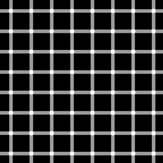 En la ilusión de la rejilla centellante, observamos puntos blancos fijos en las intersecciones, y puntos negros intermitentes