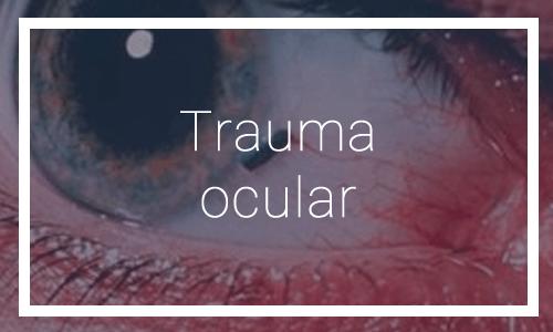 Trauma ocular - Dr. Francisco Dacarett